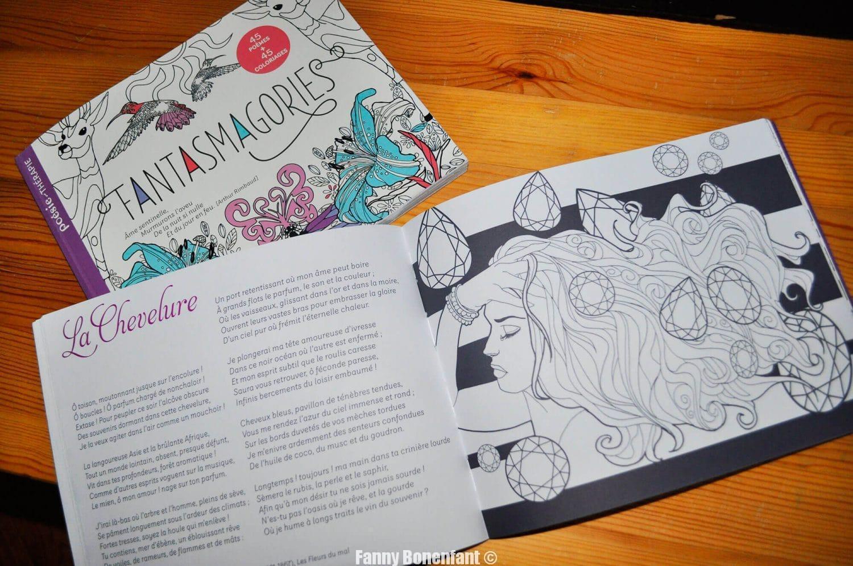 Livre de coloriages illustration fanny bonenfant éditions fleurus-mango intérieur