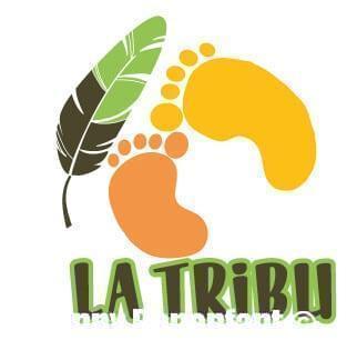 Logo La tribu Projet d'étude Jean-Baptiste TRAN NO